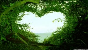 bright green leaves create heart with a view of the ocean. Text reads If you can be anything, be inclusive